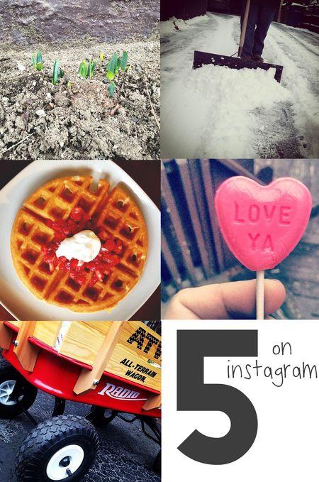 Instagramfaves
