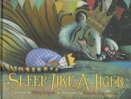 Sleep-like-a-tiger-cover